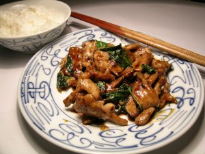xchinese-cooking-fan-and-tsai-elements.jpg.pagespeed.ic.gjHJE8HA9q