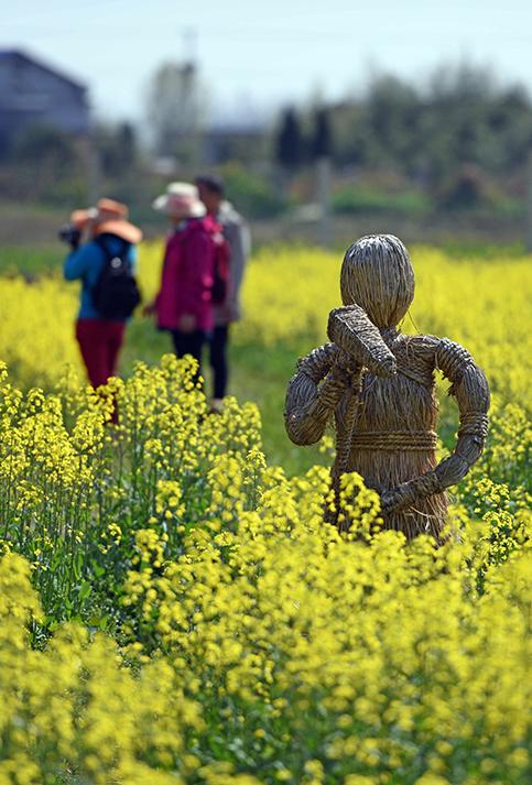 (170302) -- HUNAN, marzo 2, 2017 (Xinhua) -- Una obra de arte de paja con forma de hombre es exhibida en los campos de flores de col, en el condado de Lixian, provincia de Hunan, en el centro de China, el 2 de marzo de 2017.  <a href=