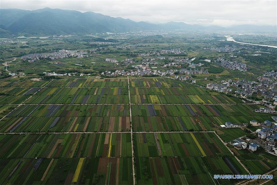 Imagen aérea de la aldea Shimenwei del municipio de Zhaitan, en el condado de Songyang, en la provincia de Zhejiang, en el este de China, el 24 de abril de 2018. Desde 2003, Zhengjiang ha venido implementando un proyecto para reformar el entorno de vida de sus poblados. Hasta finales del año pasado, un 97 por ciento de las aldeas de la provincia habían completado la revisión. (Xinhua/Huang Zongzhi)